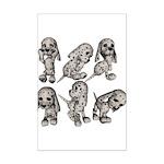 Dalmation Puppies Mini Poster Print