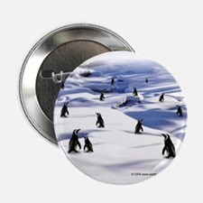 "Penguin Scene 2.25"" Button (10 pack)"