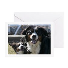 Best Friends Bernese Mountain Dog Card