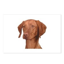 Vizsla Head Shot - Postcards (Package of 8)