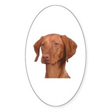 Vizsla Head Shot - Oval Decal