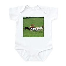 Mini Horses in Pasture Infant Creeper