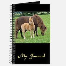 2005 Mini Colt Brantley & Mom Journal