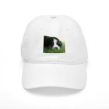 Bernese Puppy Baseball Cap