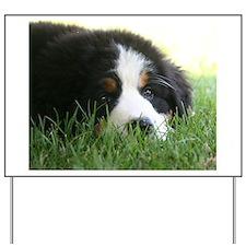 Bernese Puppy Yard Sign