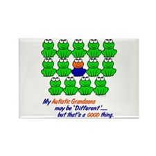 Different FROGS 1 (Grandsons) Rectangle Magnet