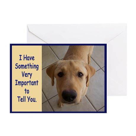 Yellow Lab Birthday Greeting Cards (Pk of 10)