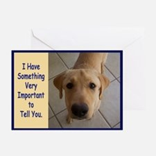 Yellow Lab Birthday Greeting Cards (Pk of 10)