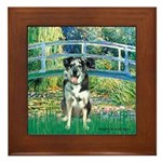 Bridge / Catahoula Leopard Dog Framed Tile