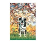 Spring / Catahoula Leopard Dog Postcards (Package
