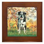 Spring / Catahoula Leopard Dog Framed Tile