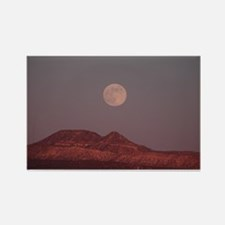 Unique Albuquerque Rectangle Magnet (100 pack)