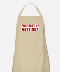 Property of DESTINEY BBQ Apron