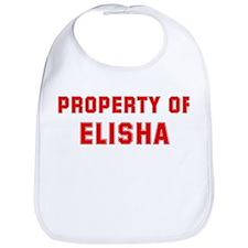 Property of ELISHA Bib