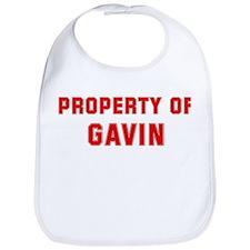 Property of GAVIN Bib