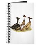 Crested Ducks Trio Journal