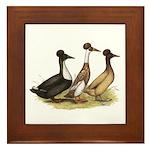 Crested Ducks Trio Framed Tile