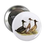 "Crested Ducks Trio 2.25"" Button (10 pack)"