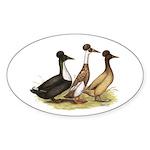 Crested Ducks Trio Oval Sticker (50 pk)