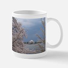DCBlossoms Mug