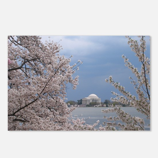 DCBlossoms Postcards (Package of 8)