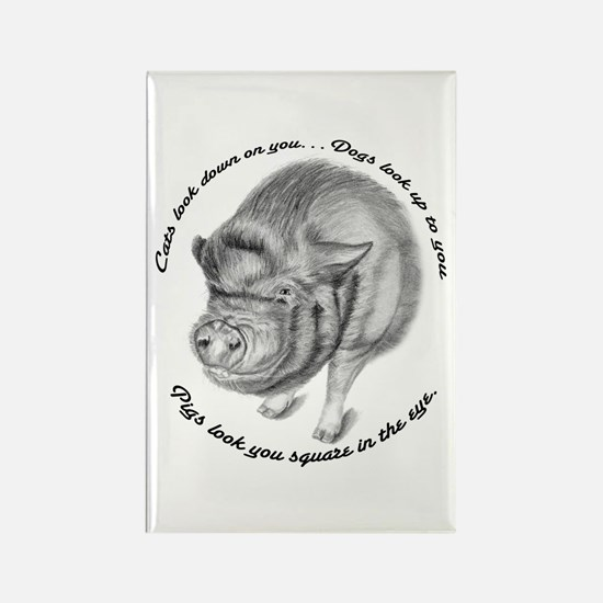 Pigs Look You Square in the Eye Rectangle Magnet