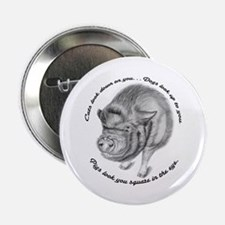 "Pigs Look You Square in the Eye 2.25"" Button"
