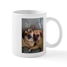 Mug brother and sister of puggles
