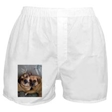 Cute New brother Boxer Shorts