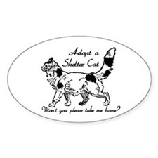 Take Me Home Cat Oval Decal