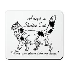 Take Me Home Cat Mousepad