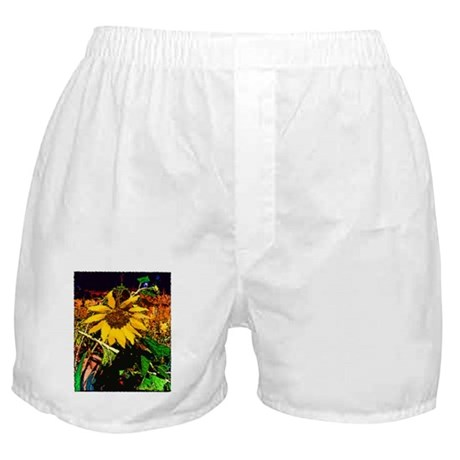 Sunflower Solstice Boxer Shorts