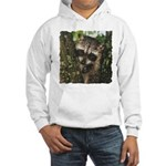 Baby Raccoon Hooded Sweatshirt