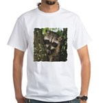 Baby Raccoon White T-Shirt
