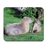Capybara Mouse Pads