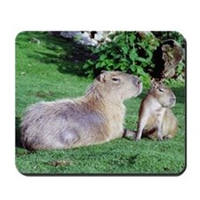 Capybara Mom and Son Mousepad