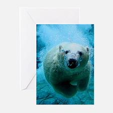 Polar Bear Greeting Cards