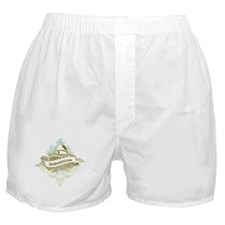 Mosque Uzbekistan Boxer Shorts