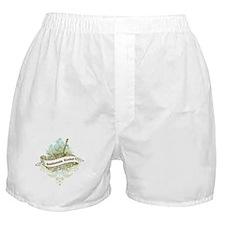 Guatemala Rocks Boxer Shorts