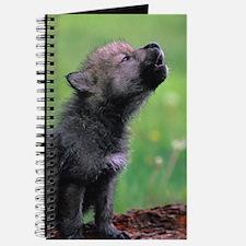 Wolf Cub Journal
