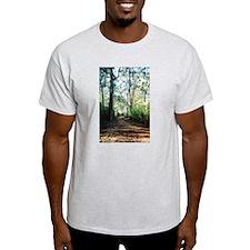 Manjimup Forest Track, WA Ash Grey T-Shirt