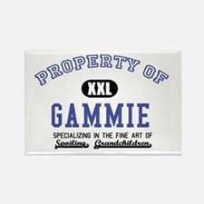 Property of Gammie Rectangle Magnet