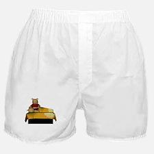 Bear Massage Boxer Shorts