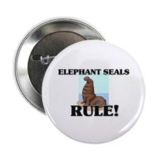 "Elephant Seals Rule! 2.25"" Button"