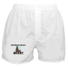 Elephant Seals Rule! Boxer Shorts