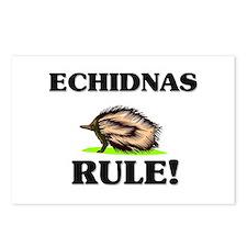 Echidnas Rule! Postcards (Package of 8)
