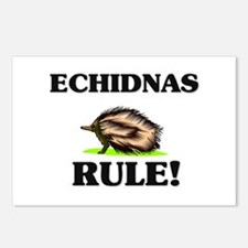 Echidnas Rule! Postcards (Package of 8)