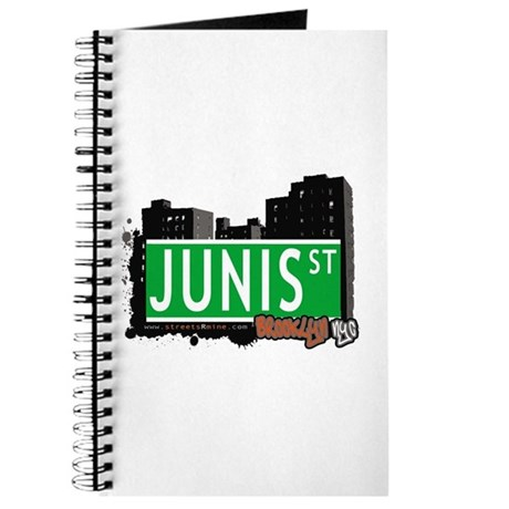 JUNIS ST, BROOKLYN, NYC Journal