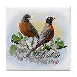 Spring birds Drink Coasters