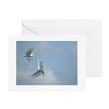 Great Egret Note Cards (Pk of 10)